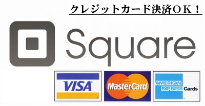 pay_with_logos2